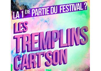 Les Tremplins Cart'Son